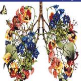 Országos tüdőrákszűrő program!